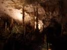 Bärenhöhle und Sommerrodelbahn